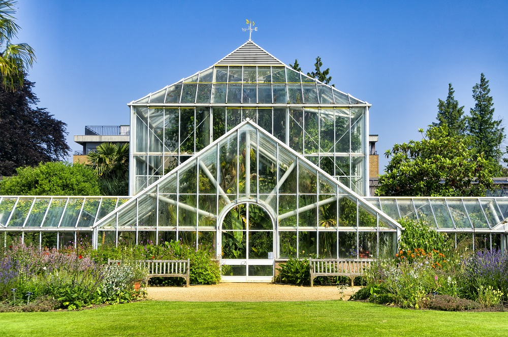 Greenhouse of the botanical garden of the University of Cambridge